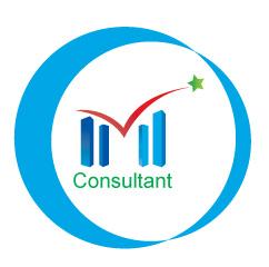 Logo IM Consultant